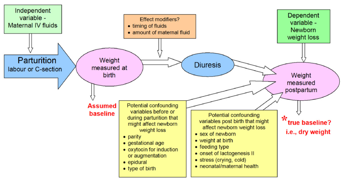 Interpreting Newborn Weight Loss